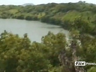 phenola grandi screwed in tropical forest